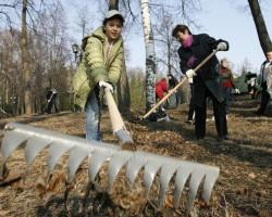 Республиканский субботник: случчане будут трудиться на рабочих местах и на посадке леса