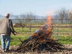 Можно ли сжигать мусор на своих участках? Отвечает МЧС