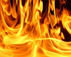 В Минской области парень в момент ссоры убил отца, вывез тело за город и сжёг его