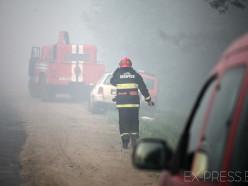 В Борисове третий день горит свалка бытовых отходов
