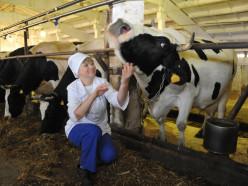 Сколько получают работники сельского хозяйства в Слуцком районе