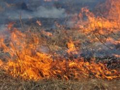 За последние 7 дней спасатели 45 раз выезжали на тушение пожаров сухой растительности и мусора
