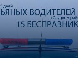 За пять дней в Слуцком районе ГАИ выявила 5 пьяных водителей и 15 бесправников