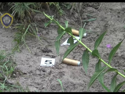 Убийство милиционера в Ивацевичском районе: 57-летнему мужчине предъявлено обвинение