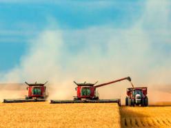 В Слуцком районе завершена уборка зерновых
