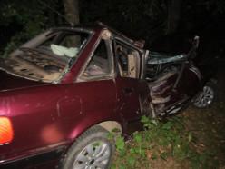 В Стародорожском районе мужчина угнал машину, чтобы съездить за «догоном»