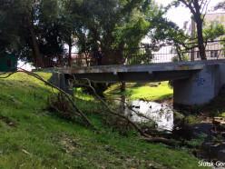 ЖКХ два месяца не может убрать поломанные ветки деревьев в Слуцке