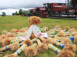 Сельхозорганизации района празднуют зажинки