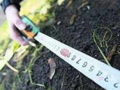 В Слуцком районе выявлено 45 случаев самовольного занятия земель