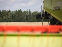 Слуцкий район первым в области намолотил тысячу тонн зерна